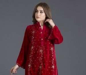 Ayesha Somaya Velvet winter dresses