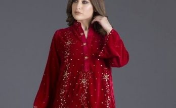 Ayesha Somaya Velvet winter dresses