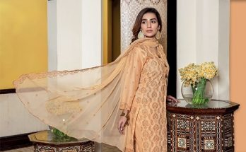 Meraki Embroidered Lawn Collection by Riaz Arts Spring Summer Online Store