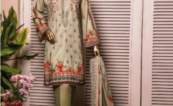 Riwayat Winter Embroidered Cotton Collection