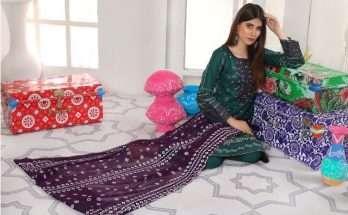Saqafat Bahar E Chundri Collection